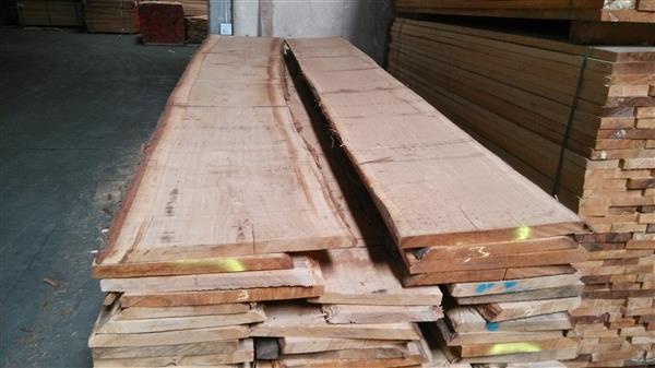 美国进口烘干红橡木板材及榆木板材