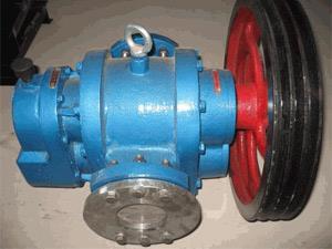 浙江嘉兴LC高粘度保温罗茨泵NYP高粘度内齿泵不锈钢保温泵